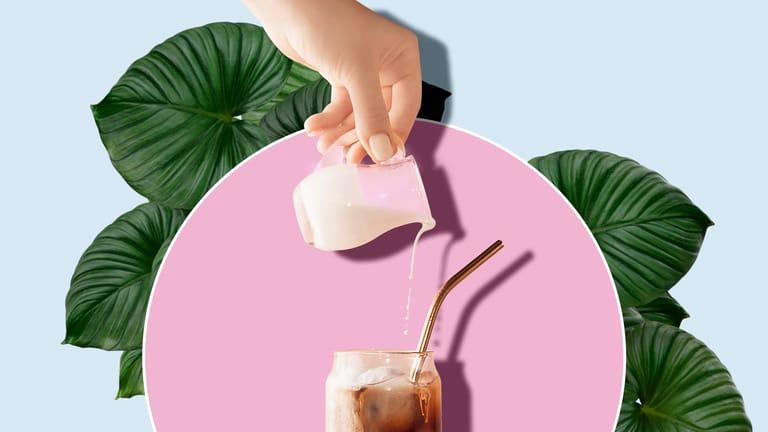 drinks + syrups